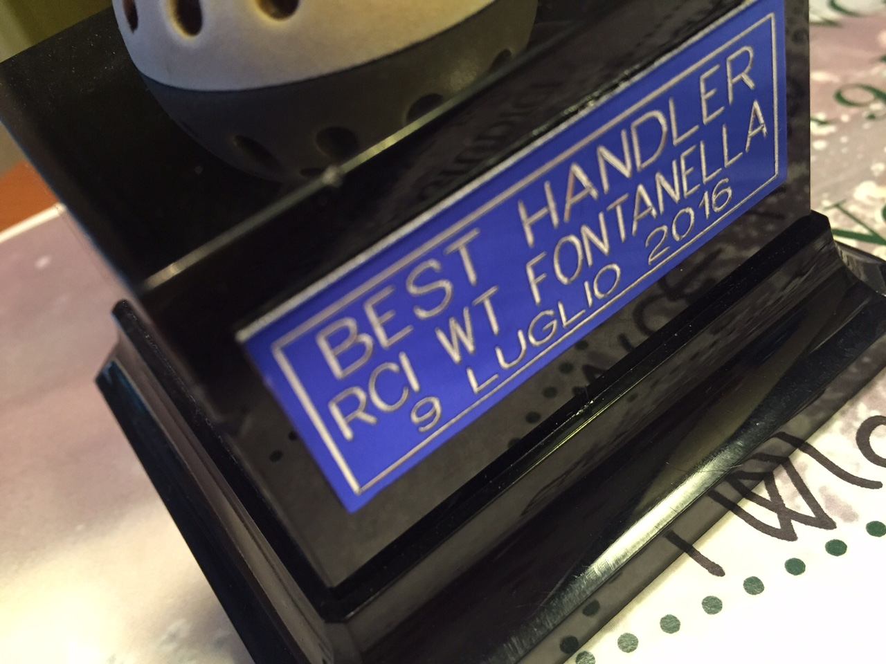 best handler